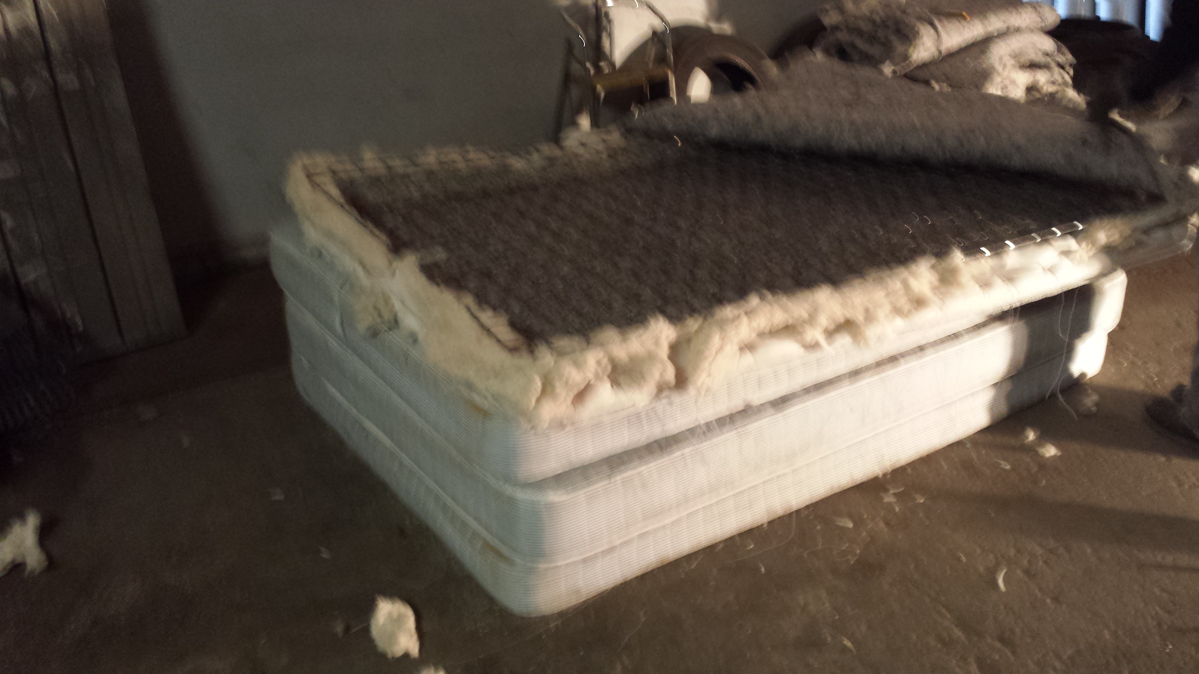 Donate A Mattress Dallas
